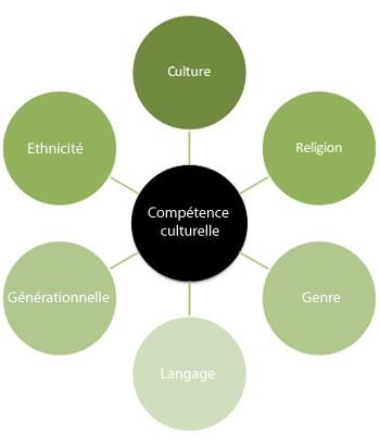 culture,compétence culturelle,fle,apprenant,cours,civilisation,enseigner