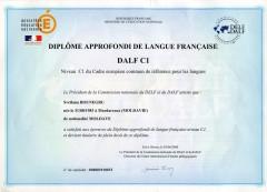 dalf,c1,méthodologie,fiches,synthèse de doucments,oral,écrit,épreuves,apprenants,classe,professeurs